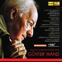 GUNTER WAND & DEUTSCHES SYMPHONIE ORCHESTER BERLIN [귄터 반트와 도이치 심포니 베를린 2]