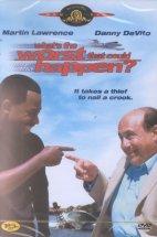 마음대로 훔쳐라 [WHAT`S THE WORST THAT COULD HAPPEN ?] [11년 1월 MGM 할인행사] [1disc]