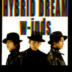 HYBRID DREAM/ RAIN IS FALLIN` [CD+DVD: 수입한정 초회반 B]