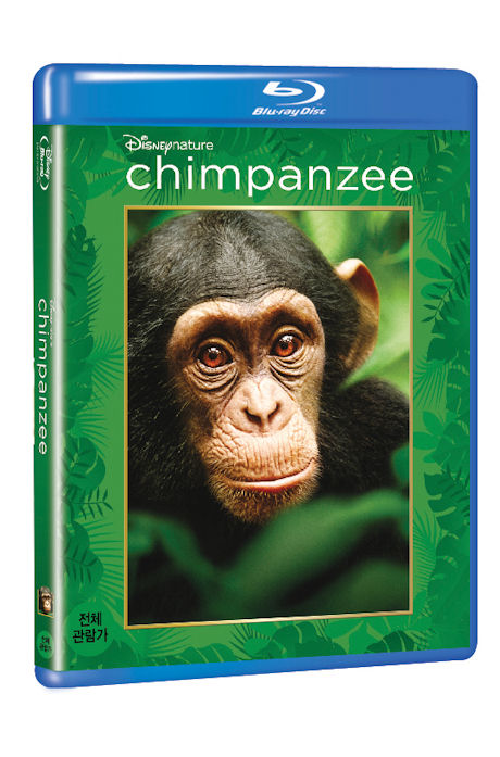  [CHIMPANZEE] [  ]