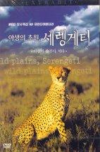 야생의 초원, 세렝게티 2: 바람의 승부사, 치타 [MBC 창사특집 HD 자연다큐멘터리] [08년 11월 MBC 드라마 프로모션]