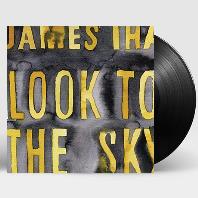 LOOK TO THE SKY [일본 레코드스토어 데이 한정반] [180G LP]