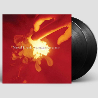 WHY SHOULD THE FIRE DIE [180G 45RPM LP]