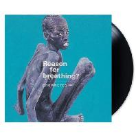 BROWN EYES(브라운아이즈) - REASON 4 BREATHING?: 15TH ANNIVERSARY [180G LP] [한정반]