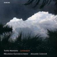 LANDSCAPE/ ALEXANDER LIEBREICH