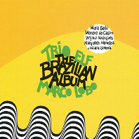 THE BRAZILIAN ALBUM