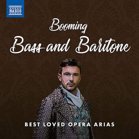 베이스와 바리톤을 위한 오페라 아리아 베스트 음반