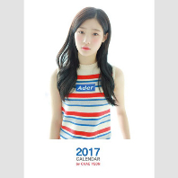CHAE YEON 2017 CALENDAR