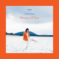 PUNCH(펀치) - DREAM OF YOU [미니 1집]
