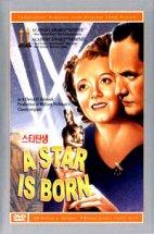 스타탄생 [A STAR IS BORN]