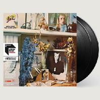 HERE COME THE WARM JETS [45RPM 180G LP]