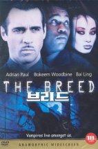 THE BREED (브리드) 행사용