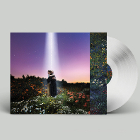 LET`S JUST SAY THE WORLD ENDED A WEEK FROM NOW WHAT WOULD YOU DO? [CRYSTAL CLEAR LP]