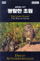 살아있는 지구: 광활한 초원 [THE LIVING PLANET: THE SEAS OF GRASS]