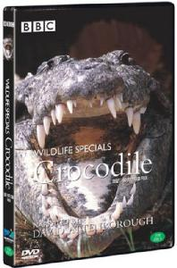 BBC 와일드라이프 스페셜: 악어 [WILDLIFE SPECIALS: CROCODILE] [15년 2월 다우리엔터테인먼트 프로모션]