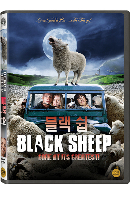 블랙 쉽 [BLACK SHEEP]