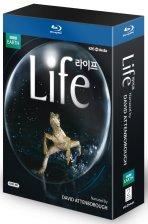 라이프: 생명의 대여정 [LIFE]