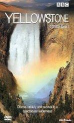 옐로스톤: 미 국립공원 [YELLOWSTONE] [09년 12월 아인스 행사]  - [밀봉 새제품] 절판/단종된 희귀작, 아웃케이스 있는 초회 한정판