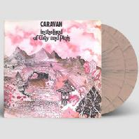 IN THE LAND OF GREY AND PINK [180G GERY & PINK SPLATTER LP]