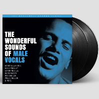 THE WONDERFUL SOUNDS OF MALE VOCALS [200G LP]