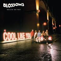 COOL LIKE YOU [DELUXE] [DIGIPACK]