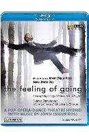 THE FEELING OF GOING/ SKANES DANSTEATER, BEN WRIGHT [벤 라이트 현대무용: 더 필링 오브 고잉 - 스코네스 댄스시어터]