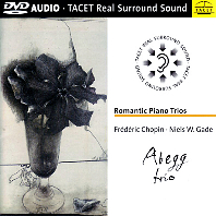 ROMANTIC PIANO TRIOS/ ABEGG TRIO (DVD AUDIO)