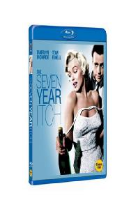 7년만의 외출 [THE SEVEN YEAR ITCH]
