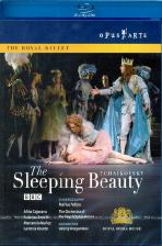 THE SLEEPING BEAUTY/ VALERIY OVSYANIKOV [차이코프스키: 잠자는 숲속의 미녀]