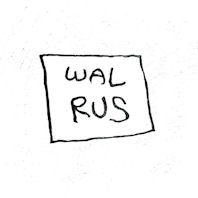 WALRUS [2ND SINGLE]