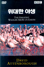 DISCOVERY/ THE GREATEST WILDLIFE SHOW ON EARTH (위대한 야생) 행사용
