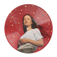 SUCKER PUNCH [PICTURE DISC LP]