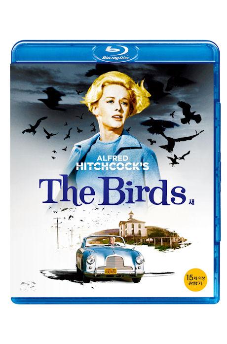 새 [THE BIRDS]