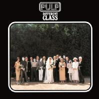DIFFERENT CLASS [180G LP]