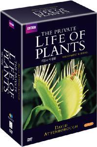 식물의 사생활: <!HS>BBC<!HE> 세계명작 다큐멘터리 시리즈 1 [THE PRIVATE LIFE OF PLANTS]