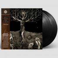 A DROP OF LIGHT [180G LP]